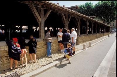 Visite Commentée De La Cité Médiévale De Crémieu à Cremieu