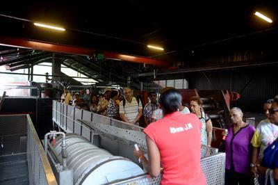 Visite Commentée De La Distillerie Jm à Macouba