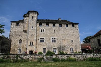 Visite Commentée De La Maison-forte De Montagnieu à Soleymieu