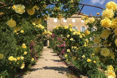 Visite Commentée Des Extérieurs Du Château De Brogieux à Roiffieux
