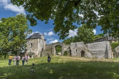Visite Commentée Des Ruines Du Château De La Turmelière à Lire