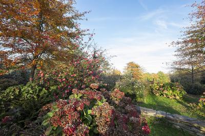 Visite Commentée Du Chantier De Réaménagement De La Plaine Sud De L'arboretum à Chatenay Malabry