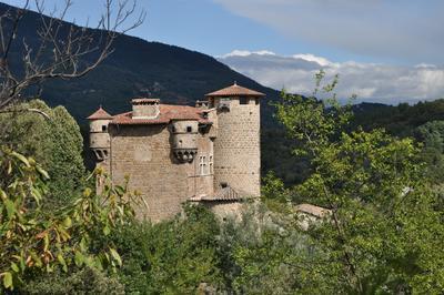 Visite Commentée Du Château Et Découverte De Ses éléments Architecturaux Conservés. à Meyras