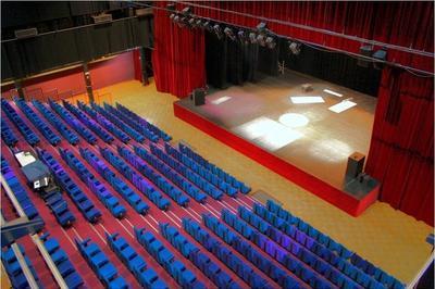 Visite Commentée Du Grand Théâtre. à Oyonnax