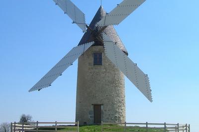 Visite Commentée Du Moulin à Condeon