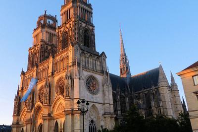 Visite Commentée Du Rez-de-chaussée à Orléans