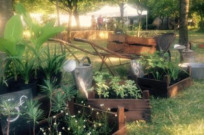 Visite Commentée Et Conseil Au Jardin Pépinière Du Jardin école à Montreuil