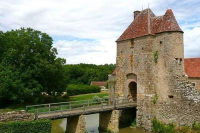 Visite Commentée Et Promenade Aux Jardins à Mornay Berry
