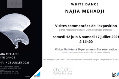 Visite commentée exposition de Najia Mehadji à La Rochelle