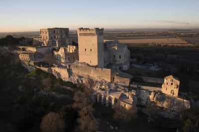 Visite Commentées De L'abbaye De Montmajour à Arles