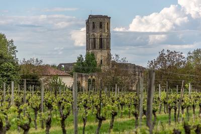 Visite De L'abbaye De La Sauve-majeure