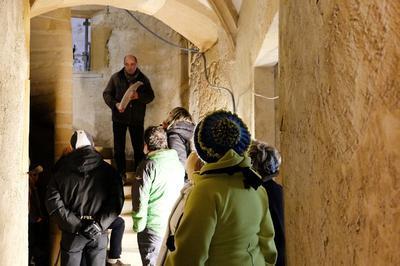 Visite De L'ancien Hôtel De L'europe à Trevoux