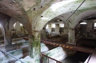 Visite De L'ancienne Papeterie Du Bout Du Monde à Saint Alban Leysse