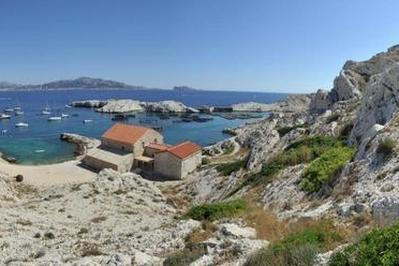 Visite De L'archipel Du Frioul à Marseille