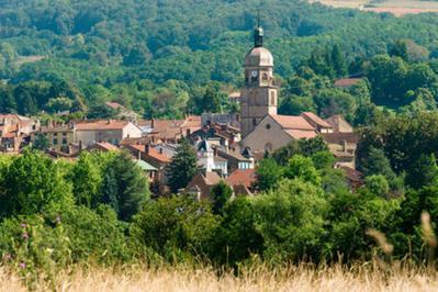 Visite De L'église De Saint-amour à Saint Amour