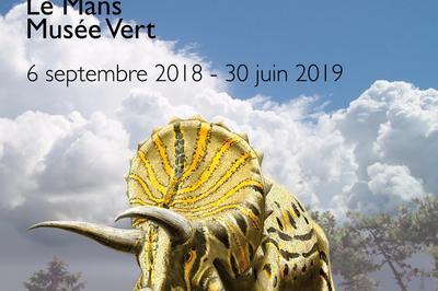Visite De L'exposition L'évolution Dans L'ère Du Temps à Le Mans