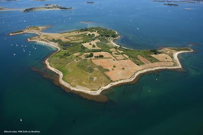 Visite De L'Île D'ilur à Ile d'Arz