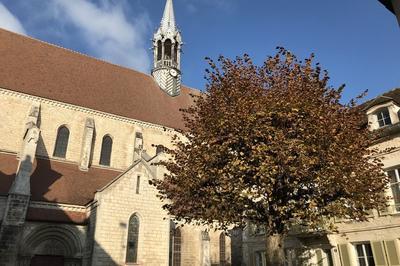 Visite De La Collégiale Saint-martin à Chablis