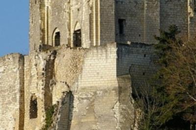 Visite De La Forteresse... Et N'oubliez Pas Un Détour Par Les Musées à Montrichard