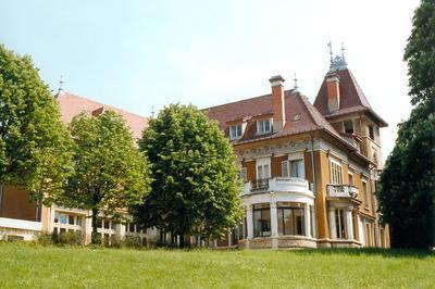 Visite De La Villa Berliet Art Nouveau à Lyon