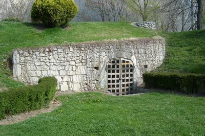 Visite Découverte Des Vestiges De L'ancien Fort De Montmélian à Montmelian