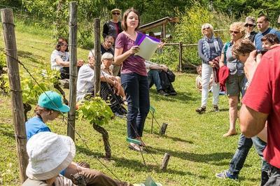 Visite Découverte Du Jardin à Chambery