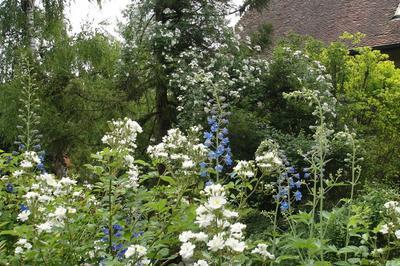 Visite Découverte Du Jardin Des Vieilles Vignes à Valay