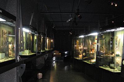 Visite Des Collections à La Lampe Torche à Biesheim