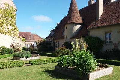 Visite Des Collections Archéologiques à Chateaumeillant