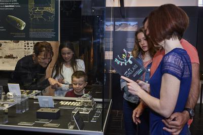 Visite Des Collections Du Musée De Préhistoire De Carnac