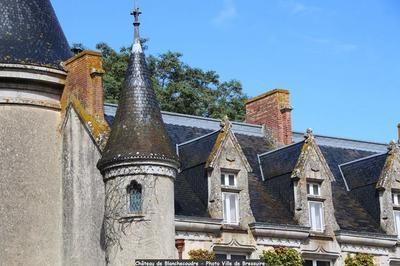 Visite Des Extérieurs Du Château à Bressuire