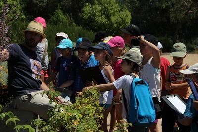 Visite Des Jardins Du Mip à Mouans Sartoux