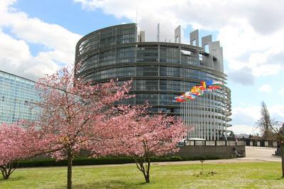Visite Du Bâtiment Louise Weiss à Strasbourg