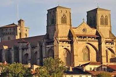 Visite Du Chantier De Rénovation De L'abbaye. à La Chaise Dieu