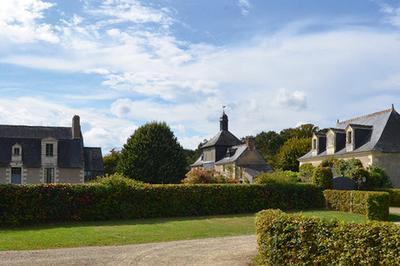 Visite Du Domaine Et De Son Manoir à Luynes