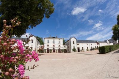 Visite Du Haras De La Vendée Et Animations équestres à La Roche sur Yon