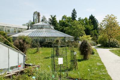 Visite Du Jardin Botanique à Strasbourg