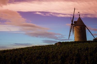 Visite Du Moulin à Vent à Romaneche Thorins