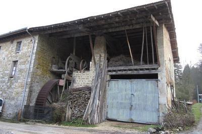 Visite Du Moulin Perrin - Démonstration Scie à Ruban Et Fabrication Huile De Noix à L'Abergement de Varey
