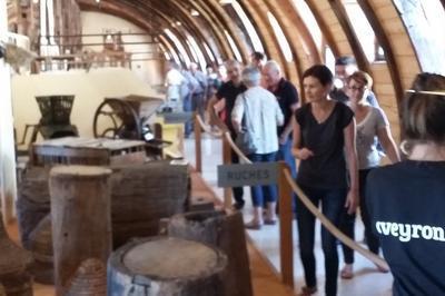 Visite Du Musée à Salles la Source