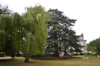 Visite Du Parc De L'hôtel Préfectoral à Amiens