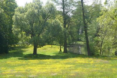 Visite Du Parc De Style Anglais à Versailles