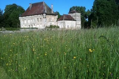 Visite Du Parc Du Château De La Varenne. à Haironville