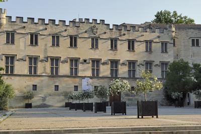 Visite-éclair Au Musée Du Petit Palais à Avignon