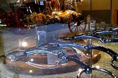 Visite Gratuite Du Musée de la voiture à Cheval à Bourg