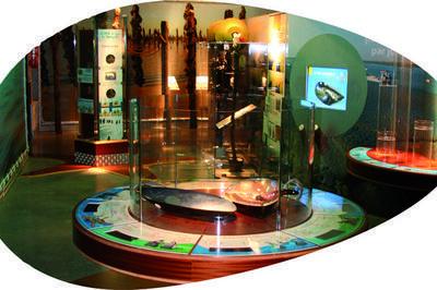 Visite Gratuite Du Musée De La Mytiliculture à Esnandes