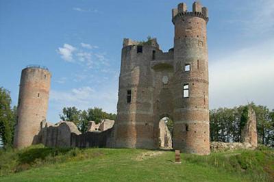 Visite Guidée Château De Bressieux