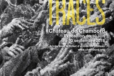 Visite Guidée De L'exposition Jérôme Zonder «devenir Traces» à Chambord