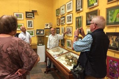 Visite Guidée De L'exposition La Forêt...essences De Vies à Senonches