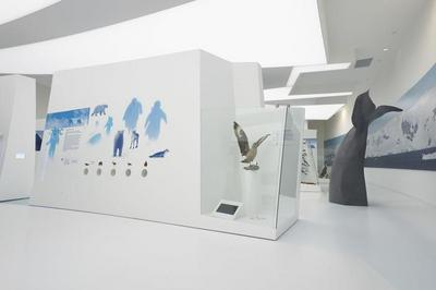 Visite Guidée De L'exposition Permanente à L'espace Des Mondes Polaires à Premanon